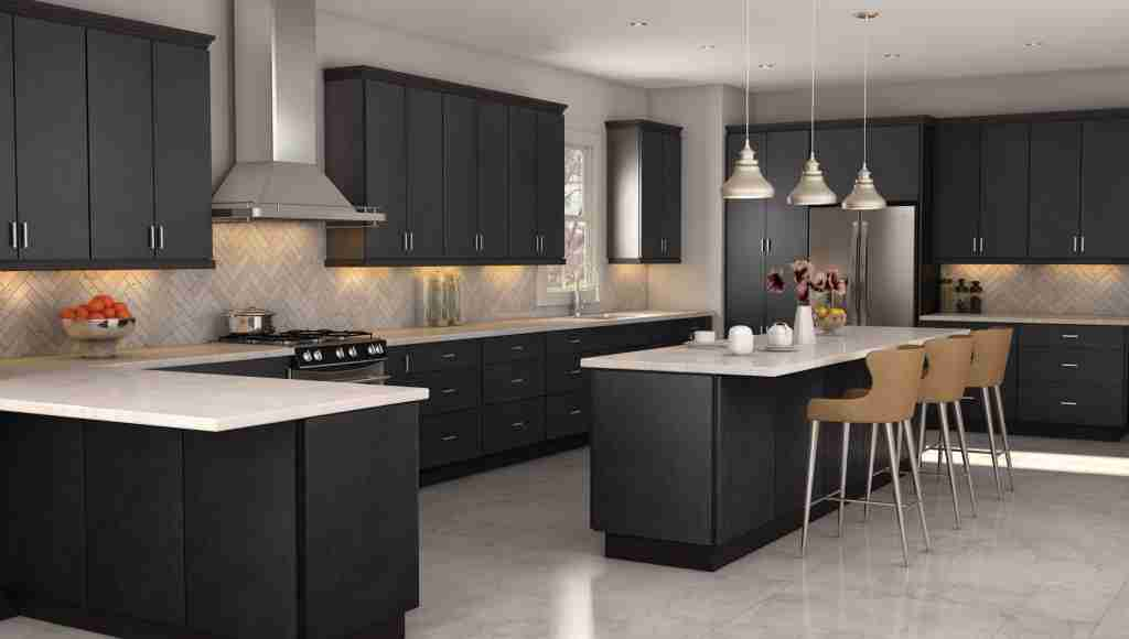 Cubitac Cabinetry Black Cabinets in Kitchen
